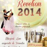 Revelion 2014 . Pensiunea Casa Lux